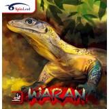 SpinLord Waran